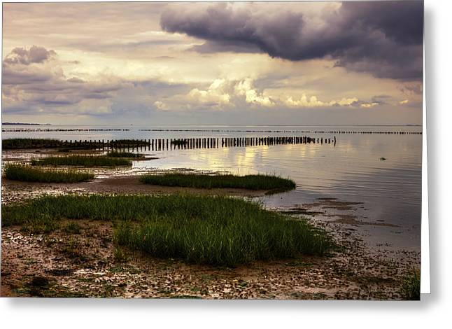 Wadden Sea Greeting Cards - Kampen - Sylt Greeting Card by Joana Kruse