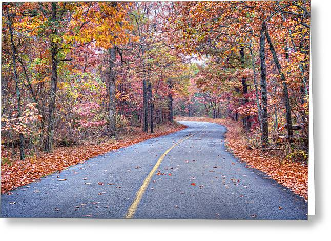 Arkansas Greeting Cards - 1010-4486 Petit Jean Autumn Highway Greeting Card by Randy Forrester