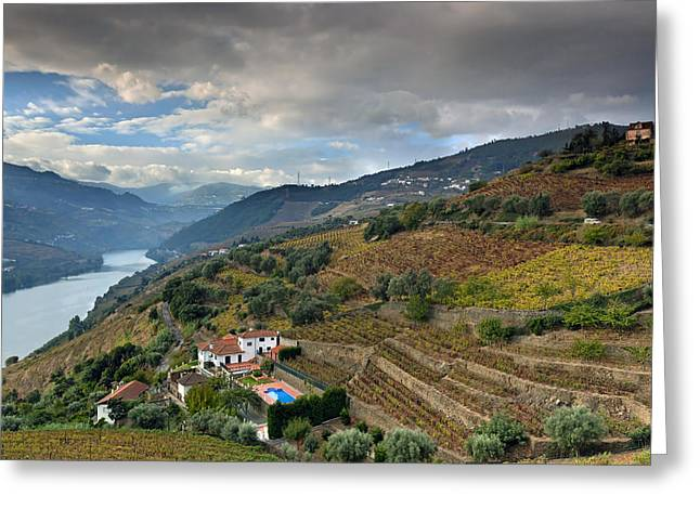Viticulture Greeting Cards - Alto Douro Wine Region Greeting Card by Andre Goncalves