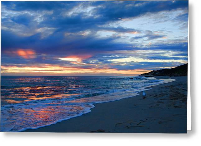 Panoramic Ocean Pyrography Greeting Cards - Brighton Beach WA Greeting Card by Imagevixen Photography