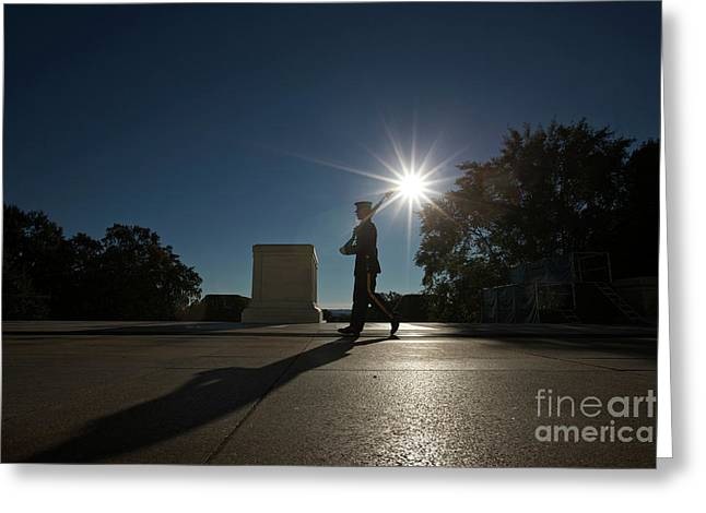Soldiers National Cemetery Greeting Cards - Honor Guard At The Tomb Greeting Card by Terry Moore