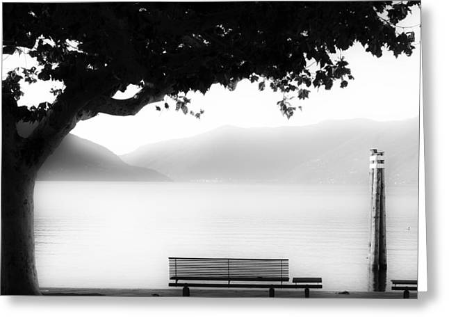 Plane Trees Greeting Cards - Lake Maggiore Greeting Card by Joana Kruse