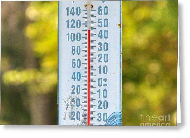 Sweltering Greeting Cards - 110 Degrees In The Shade Greeting Card by Al Powell Photography USA