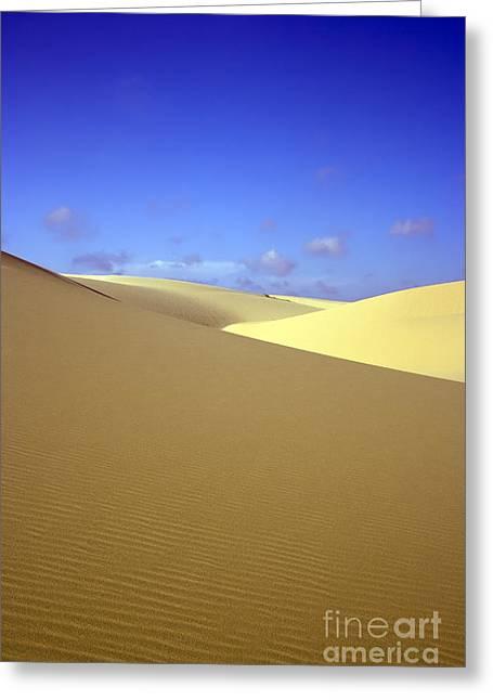 Sahara Sunlight Greeting Cards - Desert Greeting Card by MotHaiBaPhoto Prints