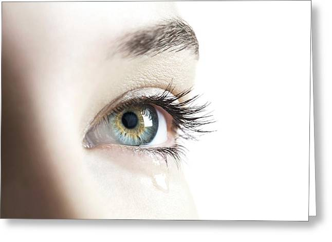 Eyebrow Greeting Cards - Womans Eye Greeting Card by