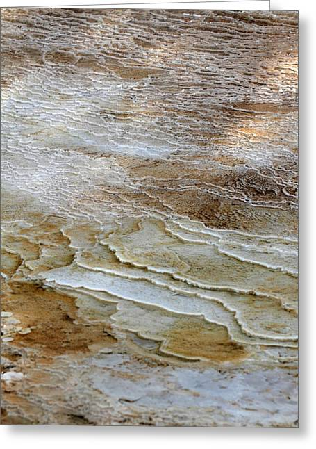 Usa Photographs Greeting Cards - Mammoth hot springs in Yellowstone National Park Greeting Card by Pierre Leclerc Photography