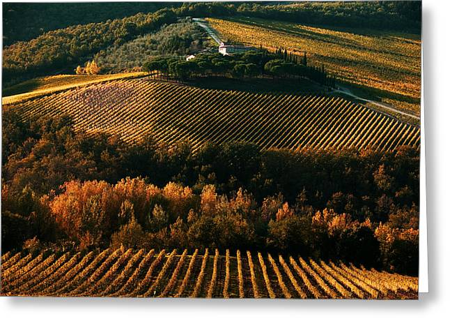 Chianti Digital Art Greeting Cards - 1393 Greeting Card by John Galbo
