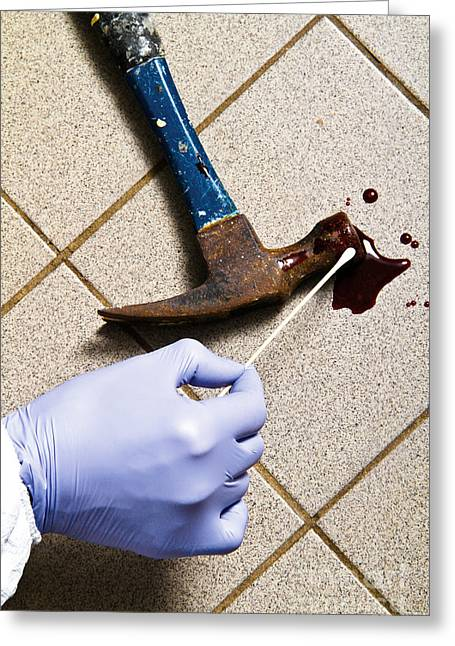 Grisly Greeting Cards - Forensic Evidence Greeting Card by Photo Researchers, Inc.