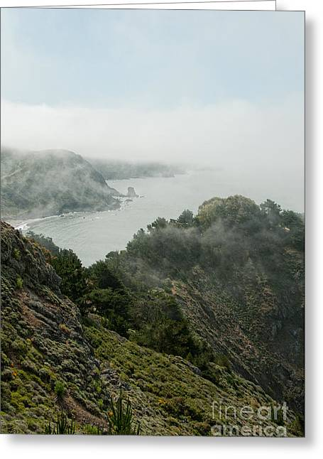 Sausalito Greeting Cards - Sausalito Greeting Card by Carol Ailles