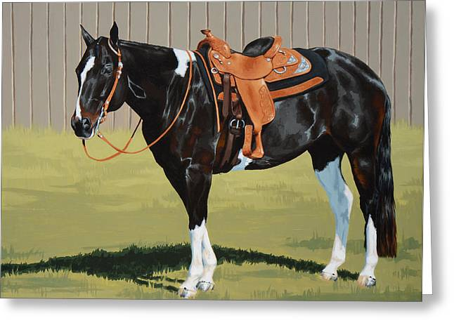 Pinto Horses Greeting Cards - Untitled  Greeting Card by Lesley Alexander