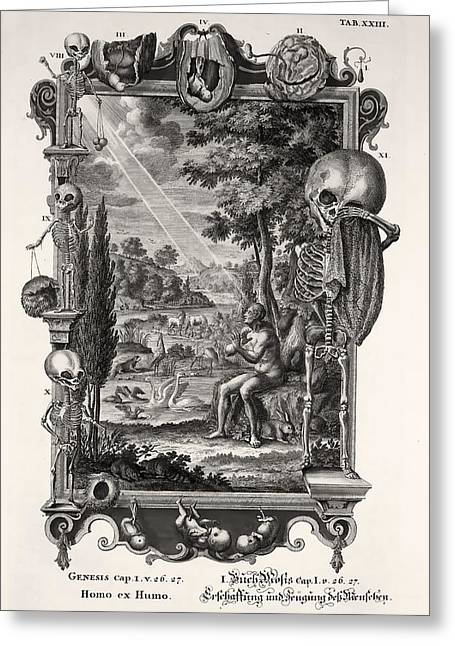 Embryology Greeting Cards - 1731 Johann Scheuchzer Creation Of Man Greeting Card by Paul D Stewart