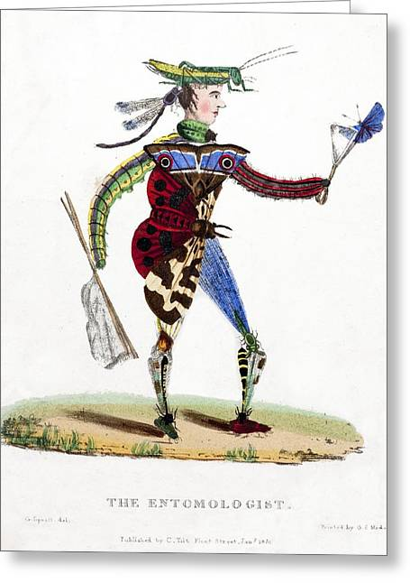 Gypsy Greeting Cards - 1830 The Entomologist Caracature G Spratt Greeting Card by Paul D Stewart