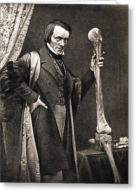 1846 Richard Owen And Moa Leg Fossil Greeting Card by Paul D Stewart
