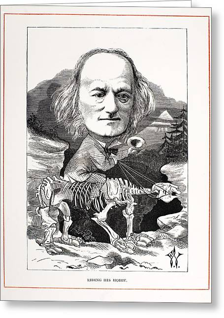Sloth Greeting Cards - 1871 Richard Owen On Megatherium Fossil Greeting Card by Paul D Stewart