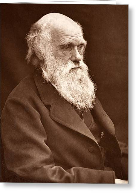 1874 Greeting Cards - 1874 Charles Darwin Picture By Leonard. Greeting Card by Paul D Stewart