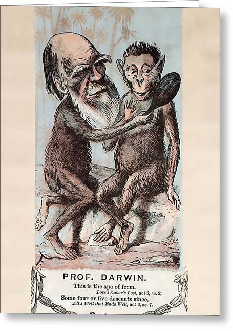 Wilberforce Greeting Cards - 1874 Monkey Darwin Cartoon By Faustin Greeting Card by Paul D Stewart