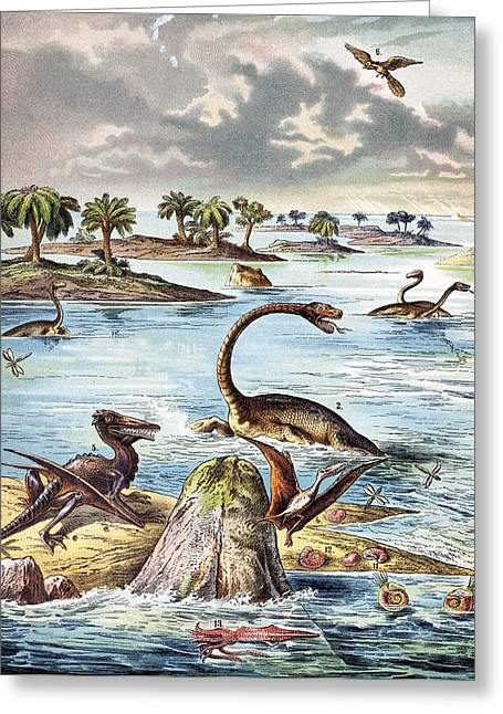Schubert Greeting Cards - 1888 Color Lithograph Jurassic Solnhofen Greeting Card by Paul D Stewart