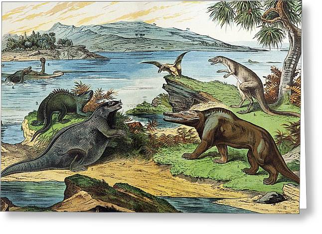 Schubert Greeting Cards - 1888 Colour Litho Of Jurassic Dinosaurs Greeting Card by Paul D Stewart