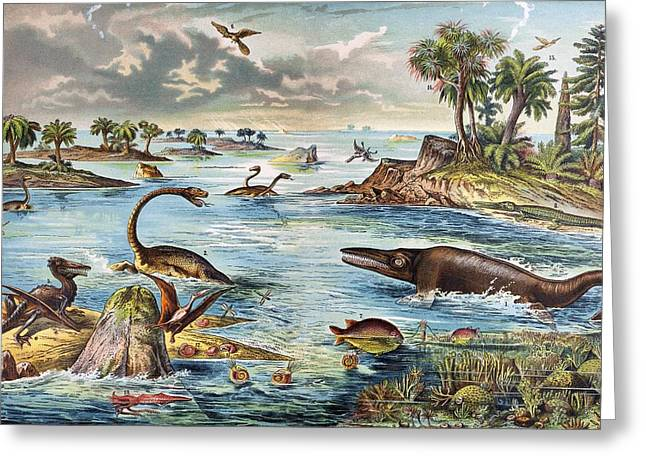 Schubert Greeting Cards - 1888 Colour Lithograph Of Jurassic Greeting Card by Paul D Stewart