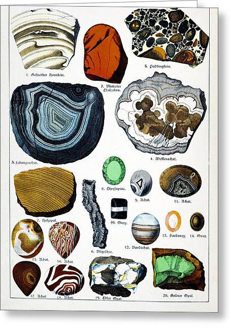 Schubert Greeting Cards - 1888 Colour Lithograph Of Minerals Greeting Card by Paul D Stewart