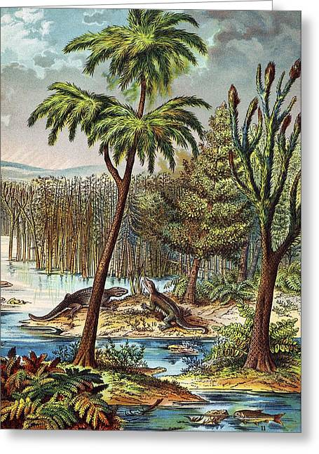 Schubert Greeting Cards - 1888 Colour Lithograph Of Permian Swamp Greeting Card by Paul D Stewart