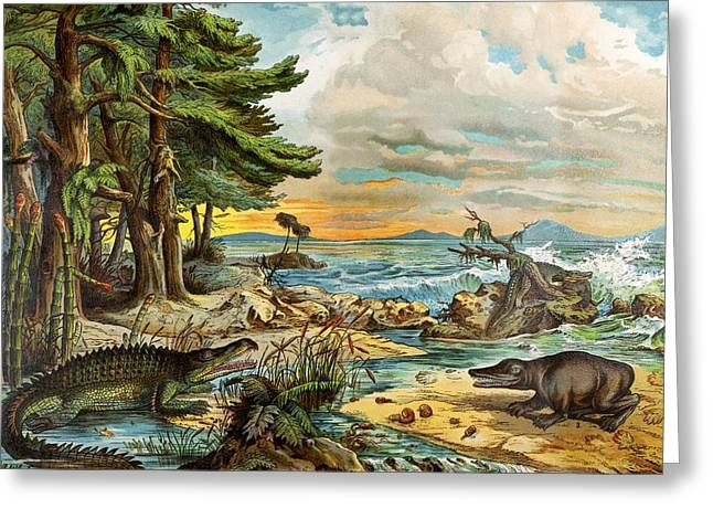 Schubert Greeting Cards - 1888 Colour Lithograph Of Triassic Coast Greeting Card by Paul D Stewart