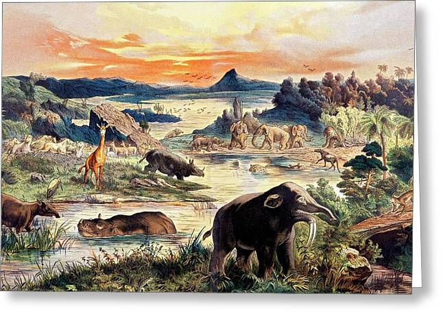 Schubert Greeting Cards - 1888 Colour Lithograph Tertiary Mammals Greeting Card by Paul D Stewart