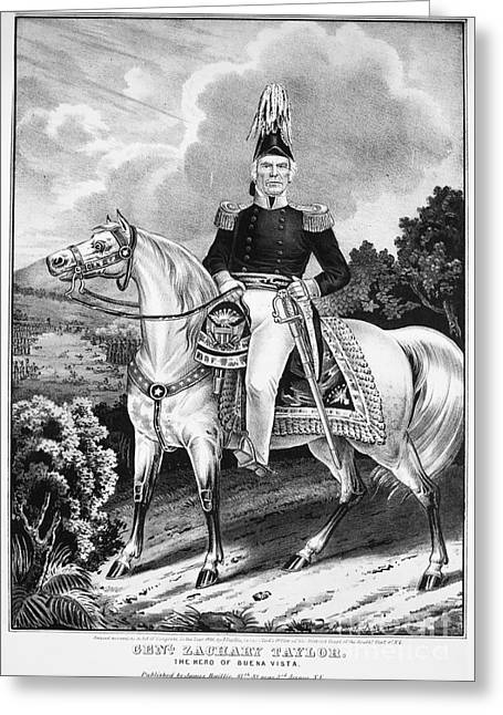 U.s Army Greeting Cards - Zachary Taylor (1784-1850) Greeting Card by Granger