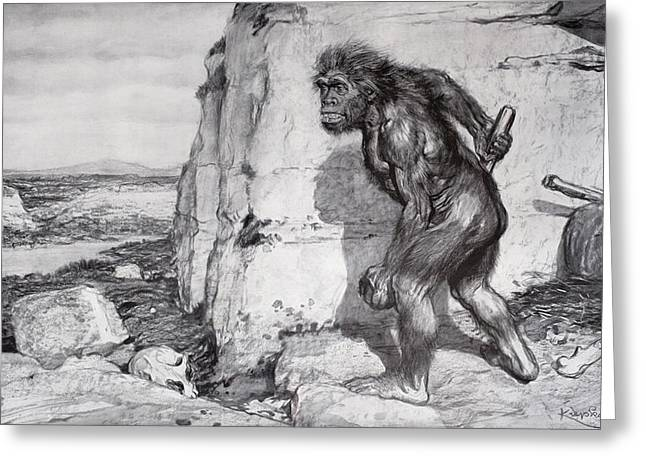 Missing Greeting Cards - 1909 First Neanderthal Restoration Crop Greeting Card by Paul D Stewart