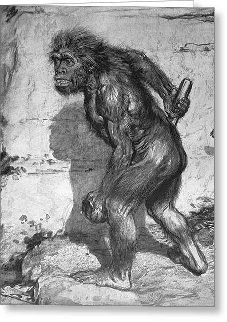 Missing Greeting Cards - 1909 First Neanderthal Restoration Crop2 Greeting Card by Paul D Stewart