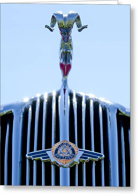 Vintage Greeting Cards - 1936 Dodge Hood Ornament Greeting Card by Jill Reger