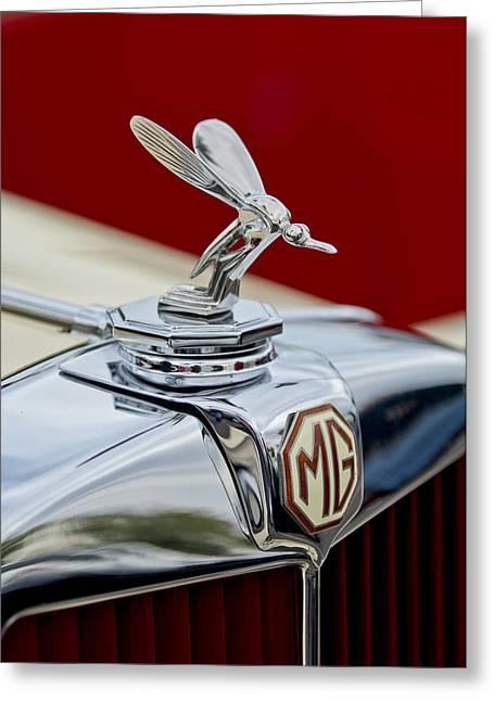 Midge Greeting Cards - 1948 MG TC - The Midge Hood Ornament Greeting Card by Jill Reger