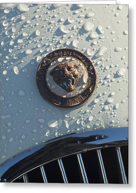 Famous Photographers Greeting Cards - 1954 Jaguar XK120 Roadster Hood Emblem Greeting Card by Jill Reger