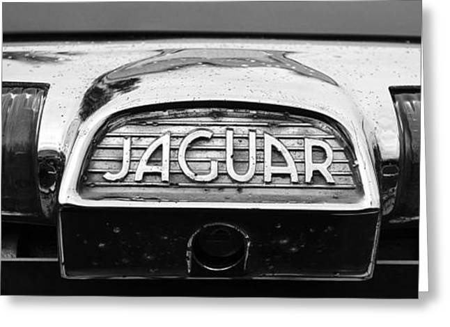Saloons Greeting Cards - 1963 Jaguar back up light Greeting Card by Paul Ward