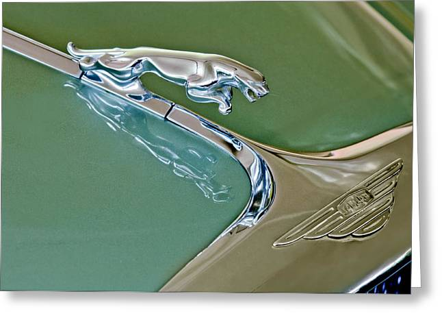 1966 Jaguar Hood Ornament Greeting Card by Jill Reger