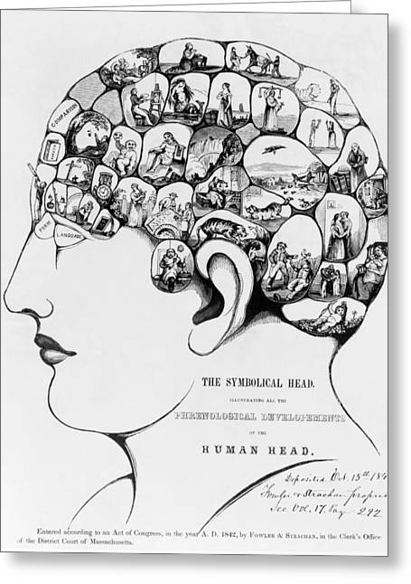 Strachan Greeting Cards - 19th-century Phrenology Greeting Card by Library Of Congress