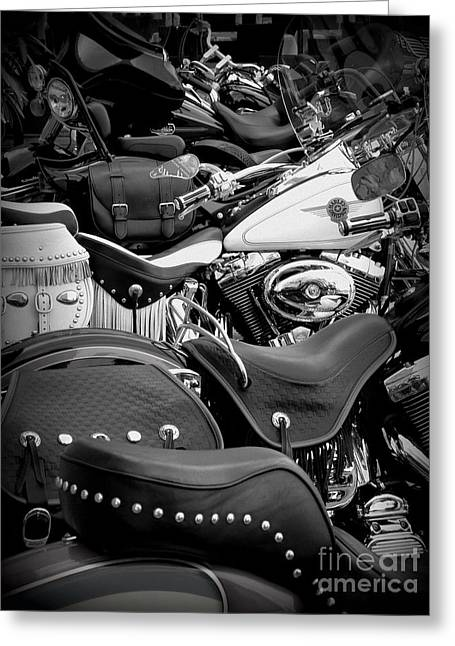 Lainie Wrightson Greeting Cards - 2 - Harley Davidson Series Greeting Card by Lainie Wrightson