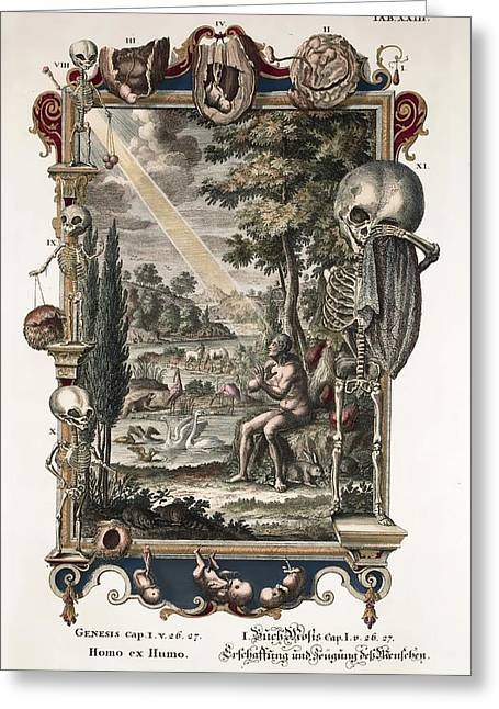 Creationism Greeting Cards - 1731 Johann Scheuchzer Creation Of Man Greeting Card by Paul D Stewart
