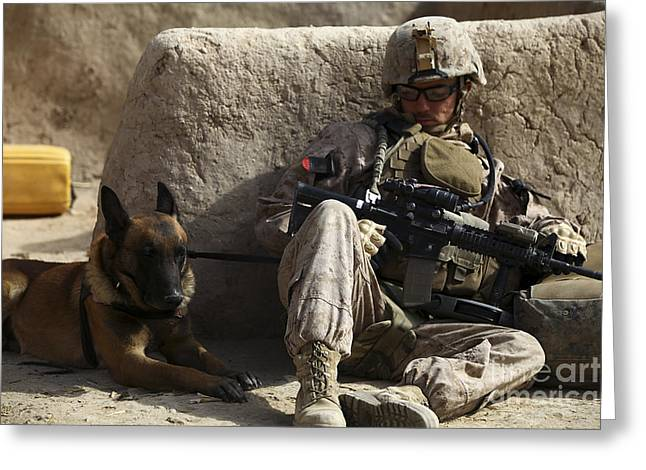 Bonding Greeting Cards - A Dog Handler And His Military Working Greeting Card by Stocktrek Images