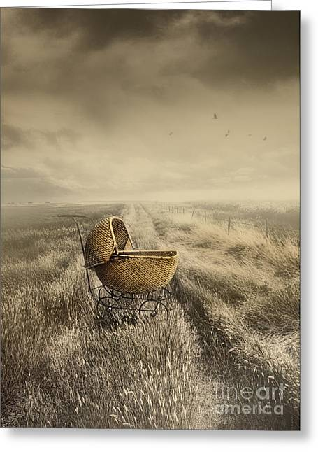 Best Sellers -  - Missing Child Greeting Cards - Abandoned antique baby carriage in field Greeting Card by Sandra Cunningham