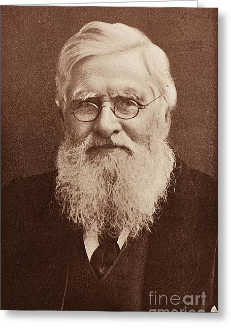 Expert Greeting Cards - Alfred Russel Wallace, Welsh Naturalist Greeting Card by Science Source