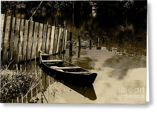 River Flooding Greeting Cards - Amazon river Greeting Card by Rosane Sanchez