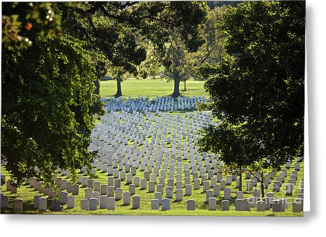 Misfortune Greeting Cards - Arlington National Cemetery, Arlington Greeting Card by Terry Moore
