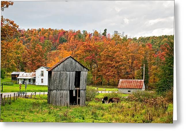 Autumn Farm Greeting Card by Steve Harrington