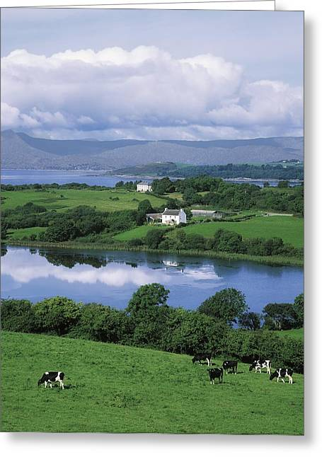 Farm Stand Greeting Cards - Bantry Bay, Co Cork, Ireland Greeting Card by The Irish Image Collection