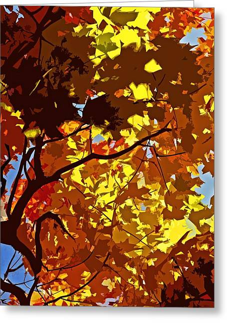 Braun Greeting Cards - Beautiful Fall ... Greeting Card by Juergen Weiss
