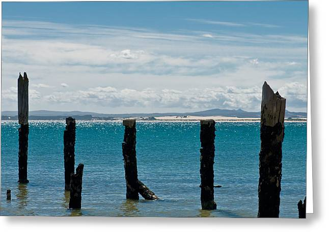 Island .oasis Greeting Cards - Beautiful rotten mooring on a beach Greeting Card by Ulrich Schade