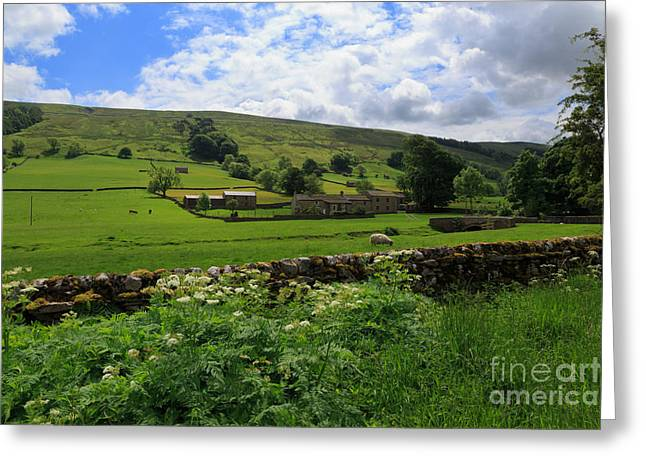 Bishopdale Greeting Card by Louise Heusinkveld