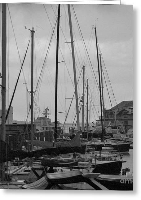 Sailboat Photos Greeting Cards - Boston Harbor Greeting Card by Julie Lueders