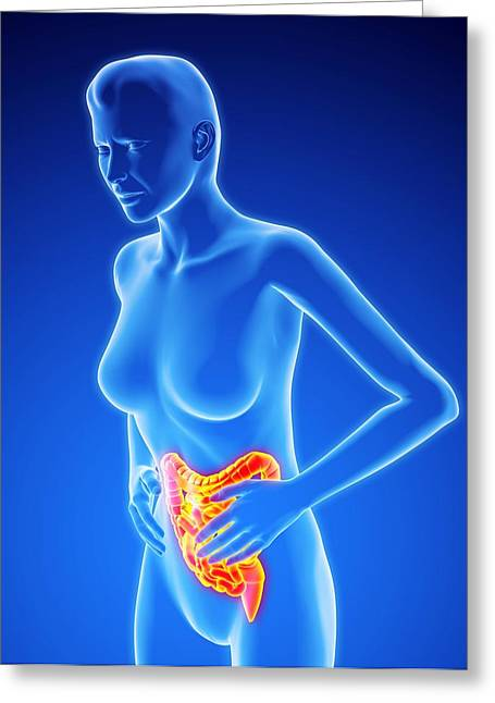 Small Intestine Greeting Cards - Bowel Pain, Artwork Greeting Card by Roger Harris